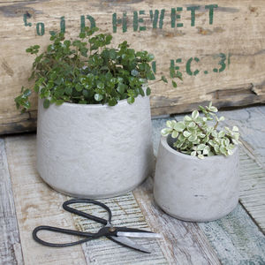 Grey Planters And Scissors Gift Set - gardener