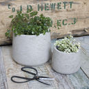 Set Of Two Tapered Cement Plant Pots