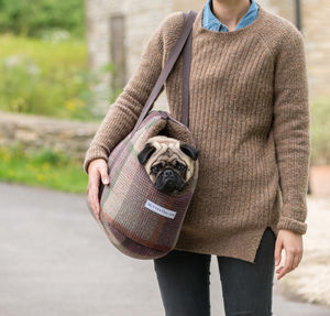 Grape Check Tweed Dog Carrier - view all new