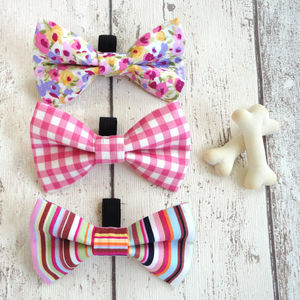 Slide On Pet Dog Bow Tie - dog clothes & accessories