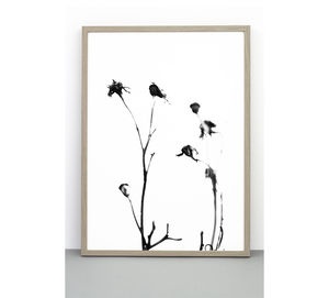 Rose Hip Print, A Botanical Photographic Poster
