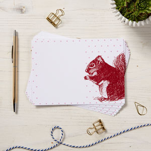 Red Squirrel Note Cards - whats new