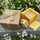 Mini Bee House Garden Gift Set