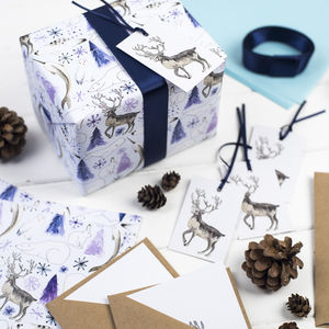 Arctic Animals Christmas Mega Wrapping Paper Kit - cards & wrap