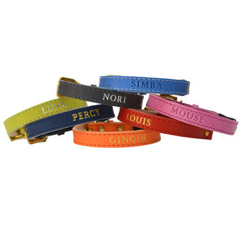 Personalised Cat Collar With Safety Catch