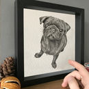 Personalised Pet Portrait Illustration