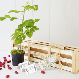 Grow Your Own Loganberry Jam Gift Set - gardener