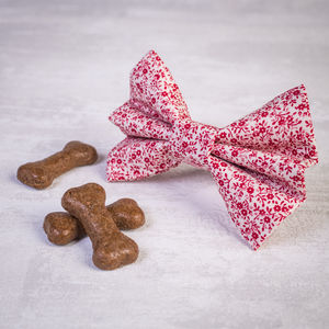 Red Floral Slide On Collar Bow For Girl Or Boy Dogs - clothes & accessories