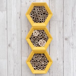 Multi Tier Solitary Bee Hotel