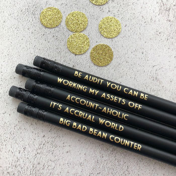 Funny Accountant Pencil Set: Be Audit You Can Be