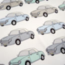 Nissan Figaro Scarf