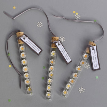 Paper Daisy Chain Personalised Gift