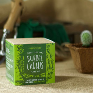 Grow Your Own Golden Barrel Cactus Kit
