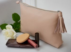 Large Make Up Bag Or Clutch - whats new