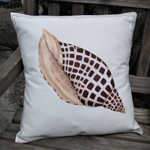 Junonia Seashell Cushion
