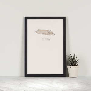 Arrow – Corgi - posters & prints