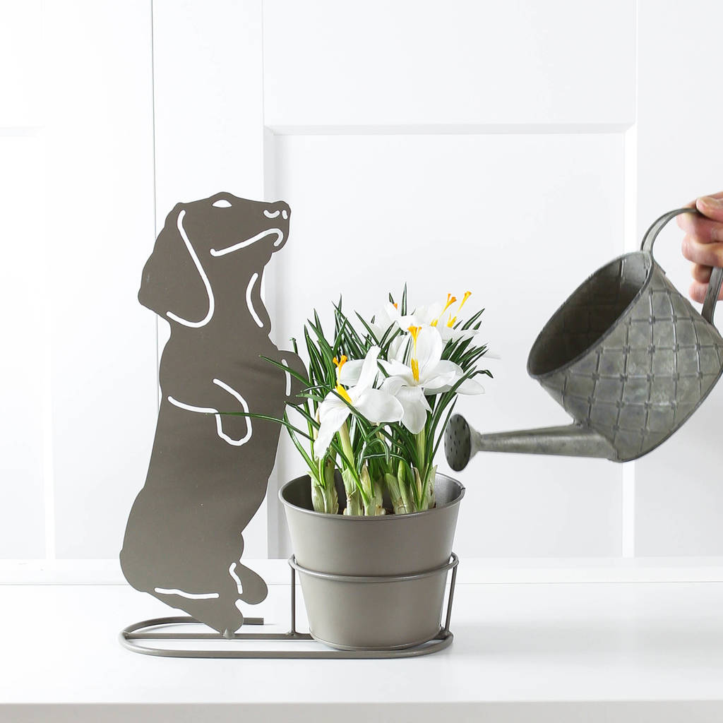 Grey Metal Dachshund Planter by Marquis &Amp; Dawe