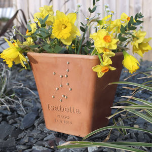 Personalised Engraved Zodiac Flower Pot And Seeds