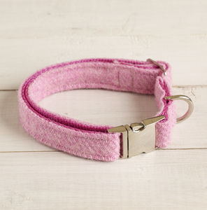 Beitidh Harris Tweed Dog Collar - pet collars