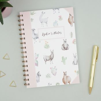 Personalised Llama Notebook