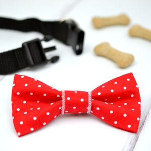 Red Polka Dot Pet Bow Tie - clothes & accessories