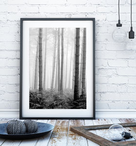 Forest Trees Print - summer sale