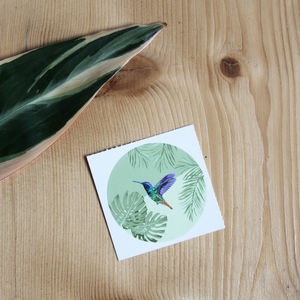 Tropical Hummingbird Sticker - summer sale
