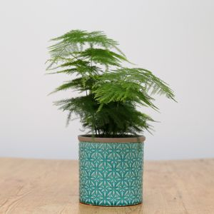 Planter No 127 Turquoise Moroccan