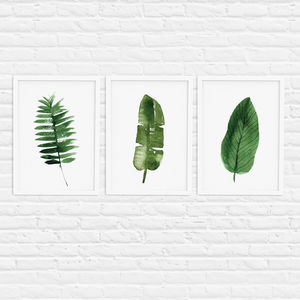 Botanical Leaf Print Set Of Three Illustration - shop by colour