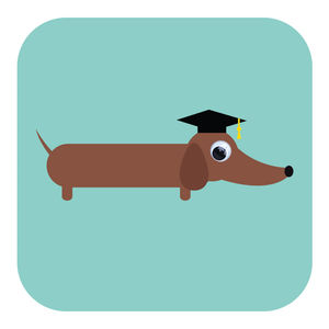 Clever Sausage Graduation Card