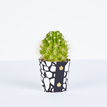 Plant Pot Cover, Cobbles Pattern, Small