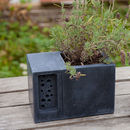 stylish concrete planter and bee hotel