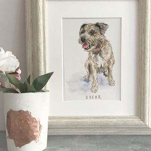 Personalised Pet Illustration - photography & portraits