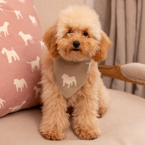 Bone And Dog Print Cotton Canvas Dog Neckerchiefs