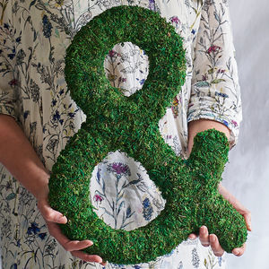 Moss Decorative Ampersand - decorative letters
