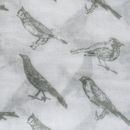 English Birds Print Scarf