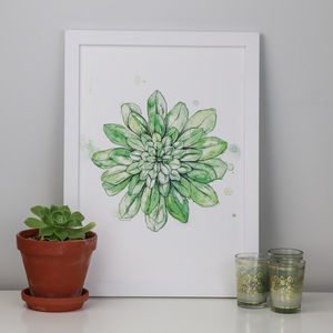 Succulent Botanical Illustrated Art Print