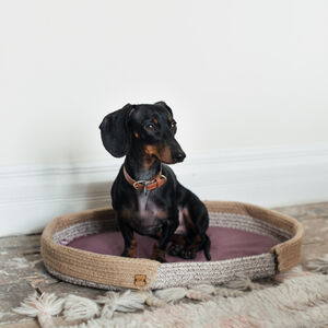Cotton Rope Dog Bed