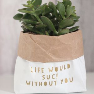 Succulent Paper Plant Pot Bag - on trend: cactus