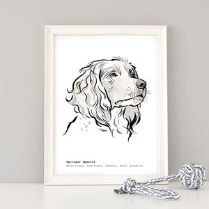 Personalised Springer Spaniel Print - summer sale
