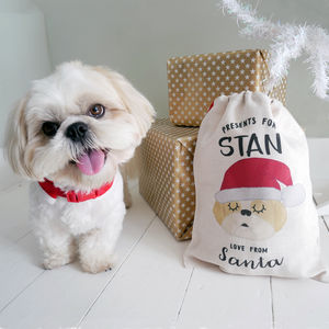 Cute Dog Santa Christmas Sack - christmas decorations