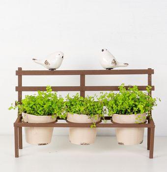 Garden Bench Three Pot Planter