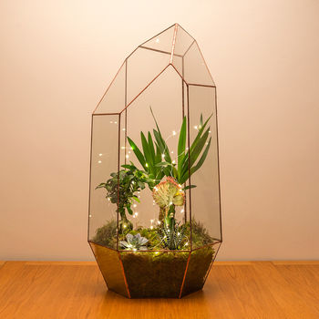 Copper Mega Gem Terrarium Fully Assembled