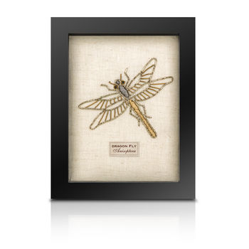 The Bullion Beetle Collection *Dragon Fly