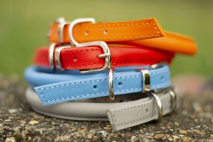 Luxury Soft Rolled Leather Dog Collar - pet collars