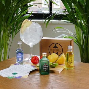 Three Fruity Gins Tasting Gift Set