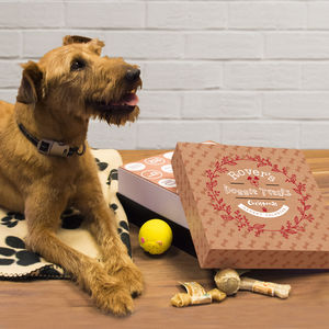 Personalised Dog Treats Advent Box - view all new