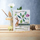 Birthday Wishes, Plantable Carrot Seed Card