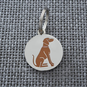 Vizsla Dog ID Name Tag - winter sale