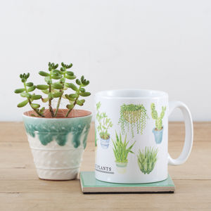 Cacti And Houseplants Illustration Mug - tableware